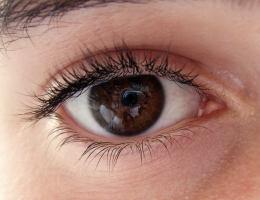 Fixierung der Augen
