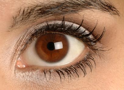schneller lernen Auge